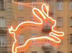 Кафе Кролик, беги!